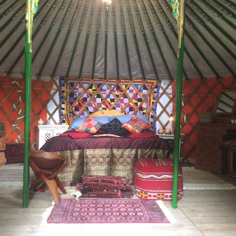 Mongolian Yurt  Camp Couture  Narracott Manor