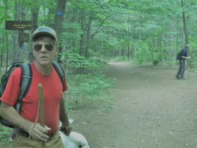 host hiking trail to Mt. Van Hoevenburg