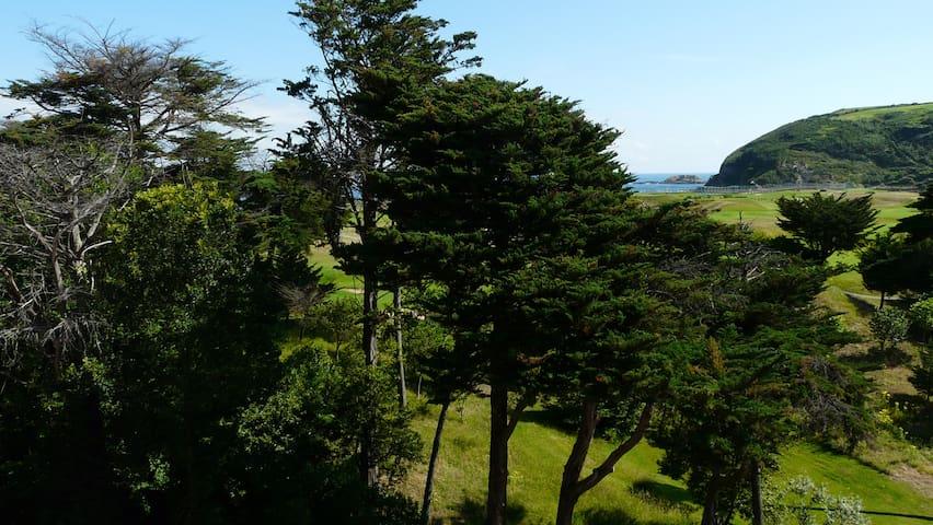 Junto al golf y playa de Zarautz - Zarautz - Wohnung