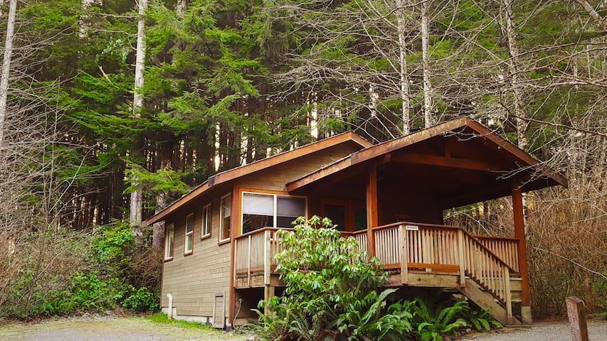 Rainforest Retreat- Bracken Cabin - Ucluelet - Cabana
