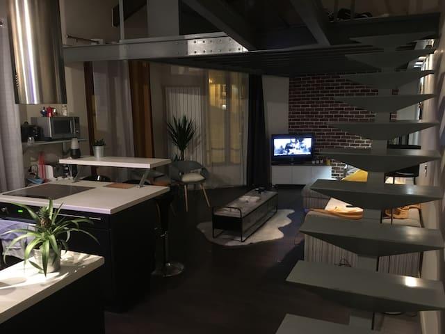Appartement loft Alfortville, proche gare de lyon