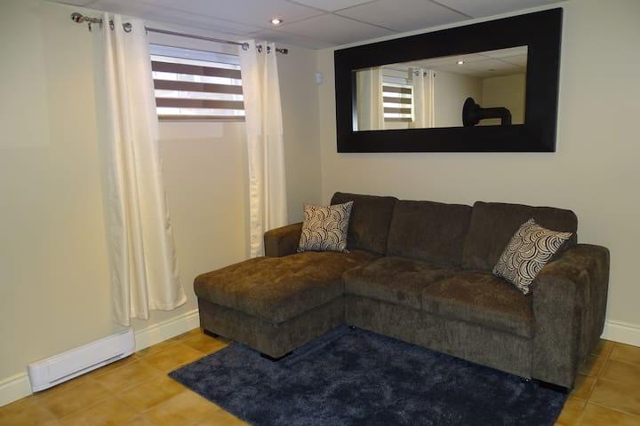 Salon avec lit convertible