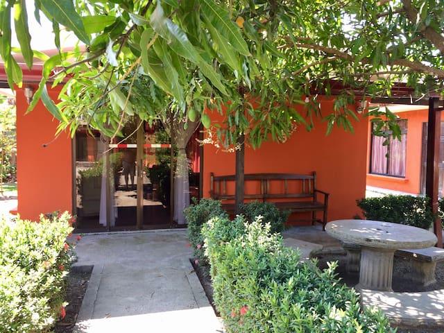 Villa Adelina #2 - Uvita - Cabana