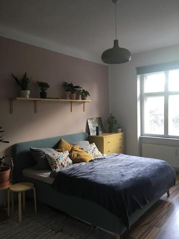 Cozy bright flat in Prenzlauer Berg