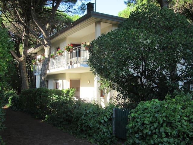 Calendule - 1 Nord, la brezza del mare fra i pini - Eraclea Mare - Apartment