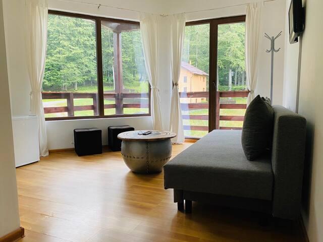 Apartament Vila MJ
