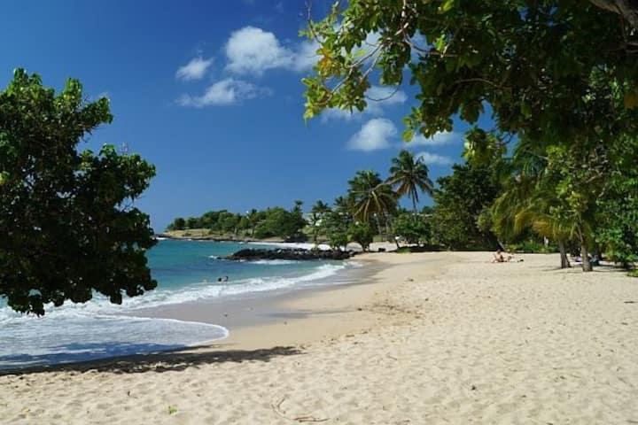 Les 2 Cocotiers : Studio N°2 à 100m des plages...