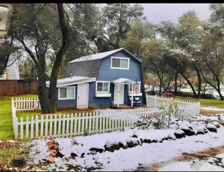 Cute & Cozy Little Blue Cottage near Yosemite