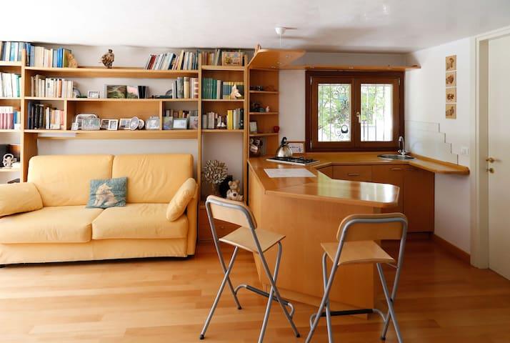 appartamento in zona ben servita