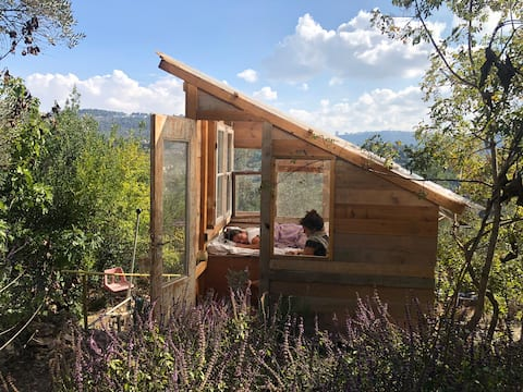 Apitherapy Cabin Above Hives Magical Epitherapy 🐝🌾 Shack