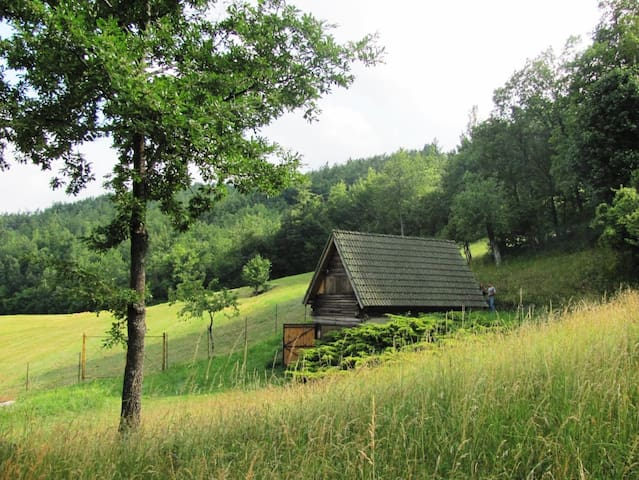 Cozy log cabin in the green of Alta Val Nure 1000m