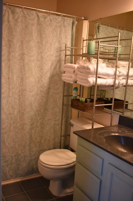 private bathroom with shower and tub combo, linens, and soap provided.