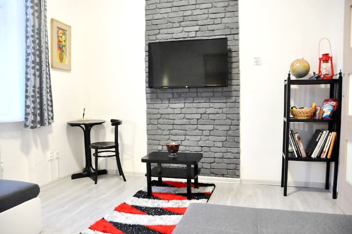 Modern & Historic Apartment in the Old Town