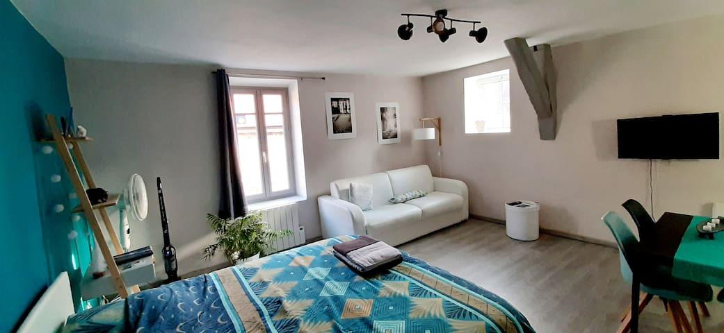 Le Pompon'ing, appartement du coeur de ville