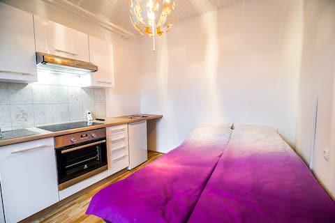 Studio with terrace and private parking Ljubljana