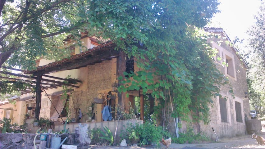 Conviviendo con la Naturaleza - Villanueva de la Vera - House