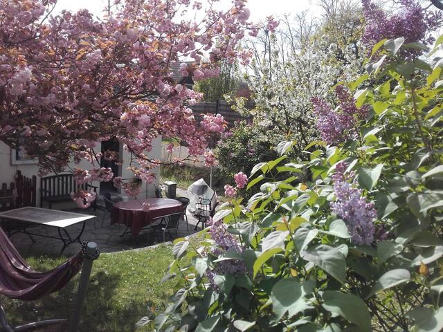 Maison avec jardin sans vis a vis - Beauchamp - Casa