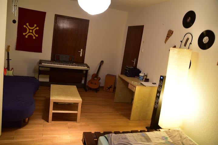 great location, confortable room! - Heidelberg - Apartment