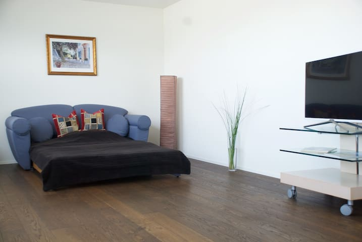 Cozy and luxurious appartment, 30 Min to Zürich - Lachen