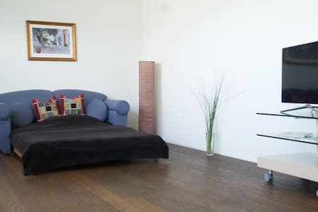 Cozy and luxurious appartment, 30 Min to Zürich - Lachen - Selveierleilighet