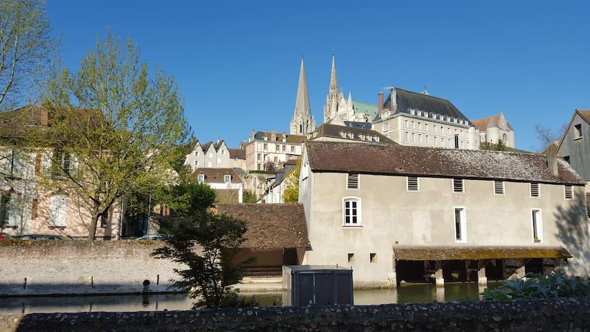 Appartement au bord de l'Eure, vue Cathédrale - Chartres - Appartement en résidence