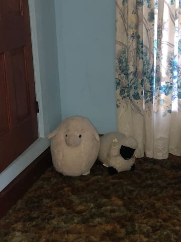 Black Bear Den.... Sheep room...room four.