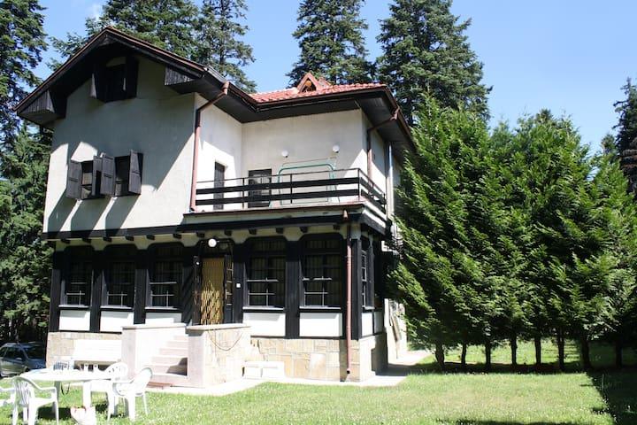 Villa Adis - Borovets - House