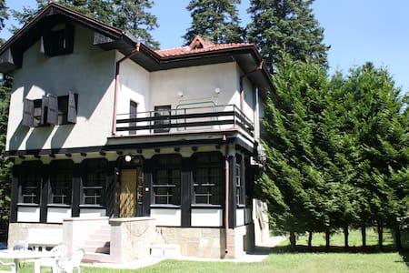 Villa Adis - Borovets - Dům