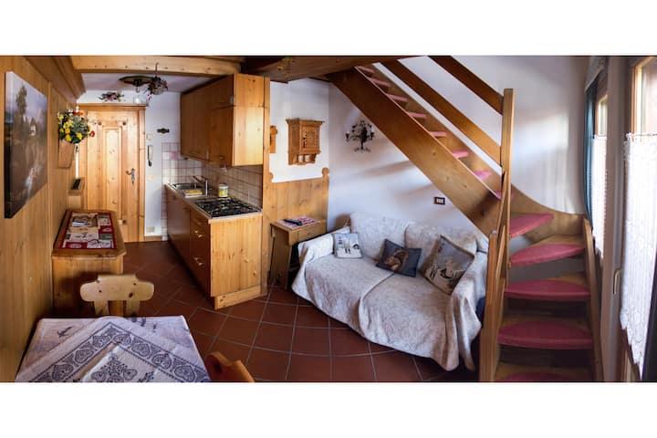 Romantic Suite Cristallo- sunny, balcony, Bus 130m