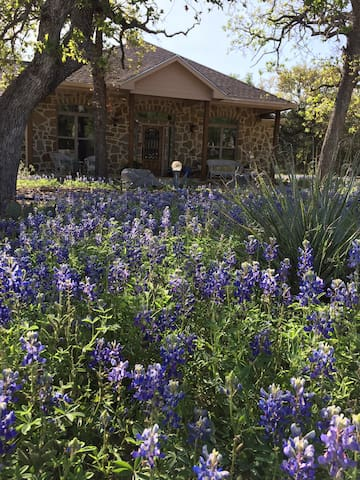 Hill Country B & B, 1 or 2 guest rooms, wine tours