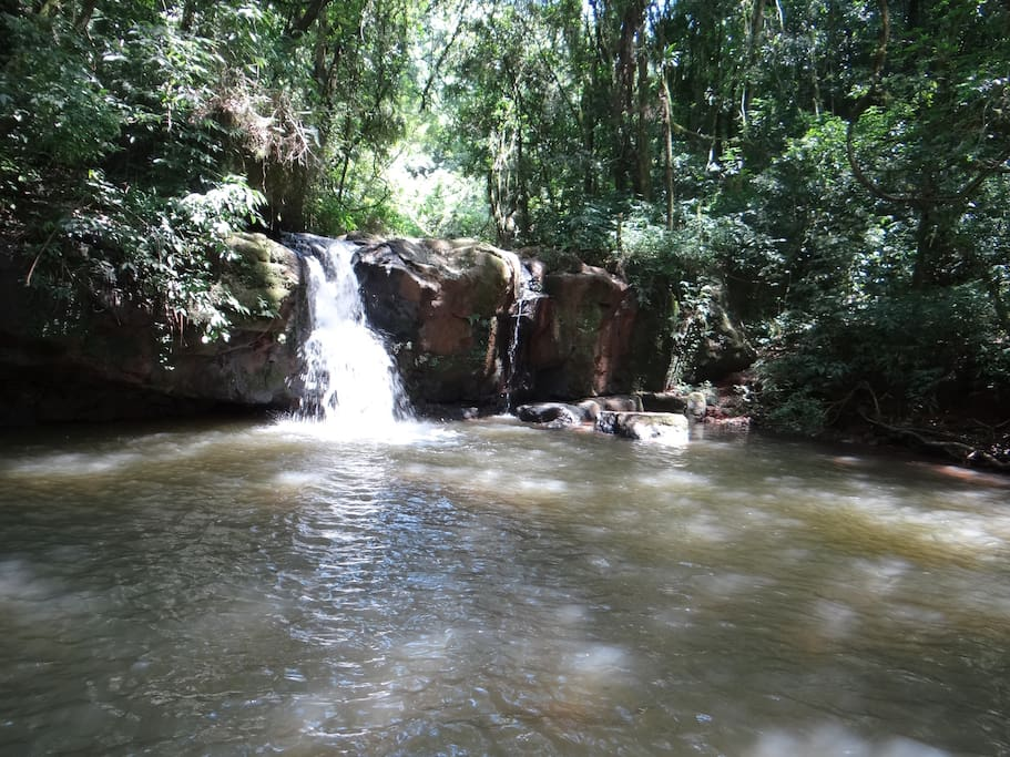 Cachoeira - 20 min a pé