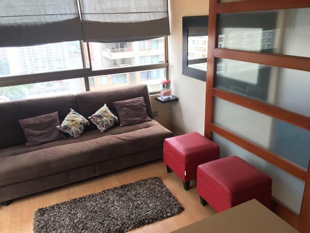 Santiago centro, cómodo y excelente vista - Santiago - Apartment