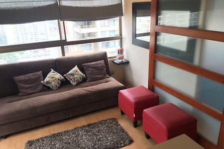 Santiago centro, cómodo y excelente vista - ซานติอาโก - อพาร์ทเมนท์