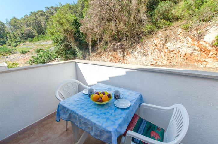 Studio Apartment, seaside in Zastrazisce - island Hvar, Balcony