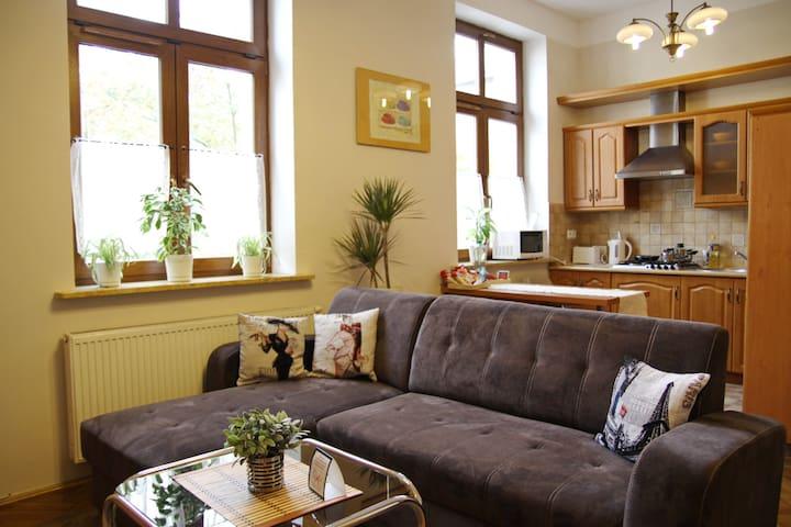 Deluxe apartment, 5min - Wawel, 3min - Kazimierz
