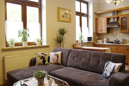 Deluxe apartment, 5 min -Wawel, 3 min - Kazimierz