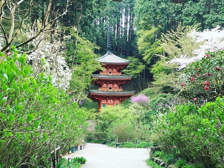 Stunning pagoda at Joururiji temple.