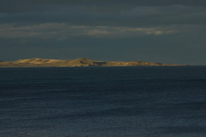 Moeraki lighthouse in the distance