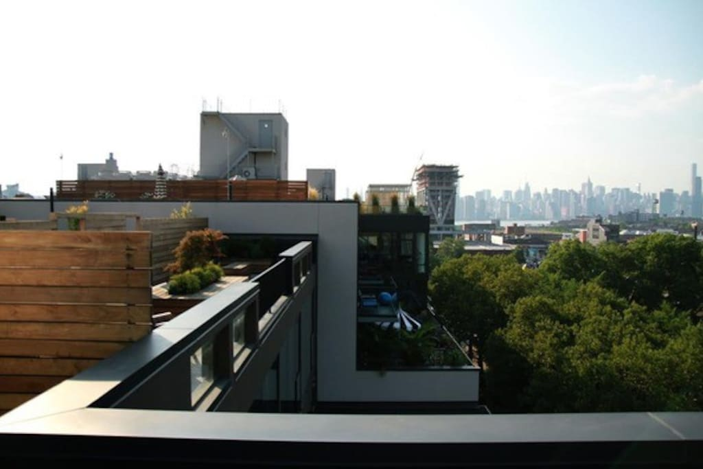 Manhattan and park views from the roof