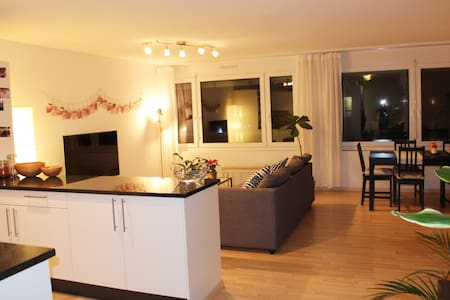 Cozy and big apartment in Zurich - for 5 persons - Цюрих