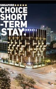 Luxurious One Bedroom Apt In City! - Singapur