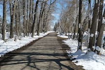 Beautiful walks and bike rides just minutes away along the bow River in Carburn Park