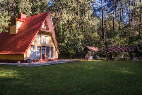 Casa en medio del bosque Ideal para familias