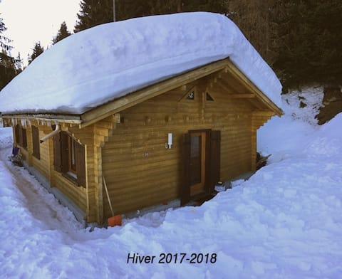 Chalet les Lutins in Thyon - Les Collons, Valais