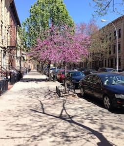 Historical Brooklyn.  - Ridgewood  - 公寓