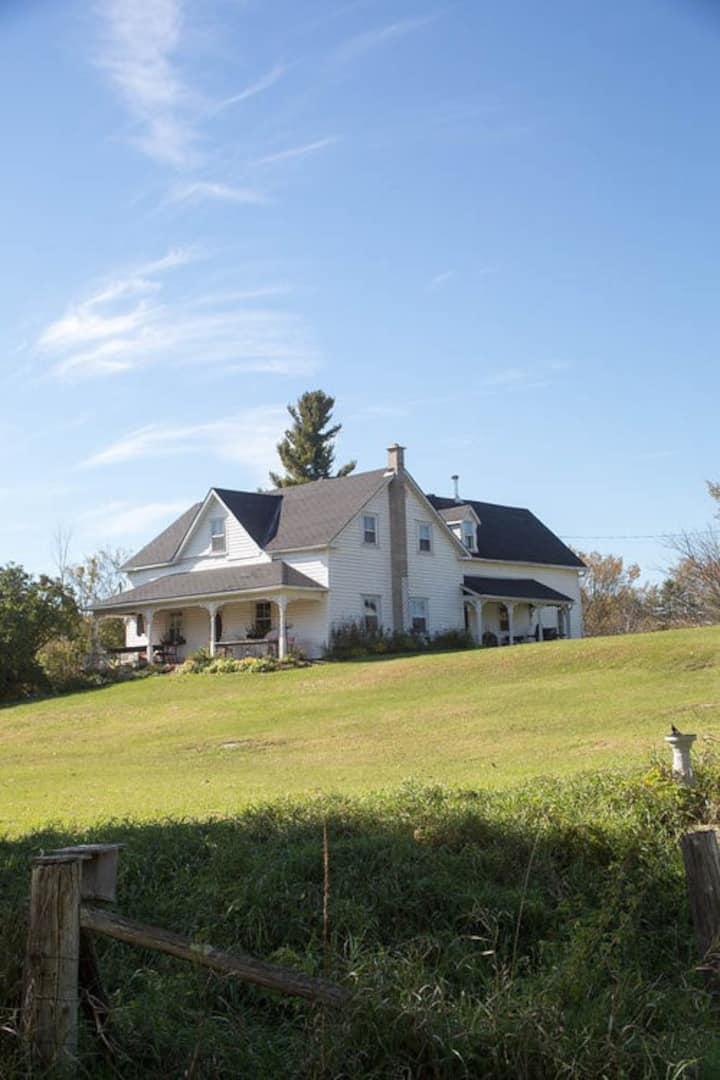 Spacious farmhouse, creation studio and 225 acres