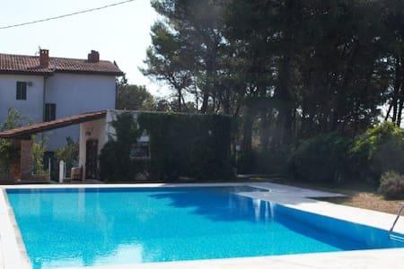 Villa with swimming pool- Puglia - มาร์นิน่า ฟรังกา - วิลล่า