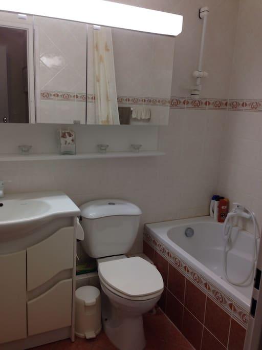 Une salle de bain équipée d'un lavabo, un wc et une baignoire !