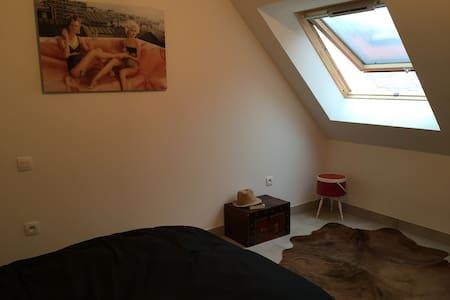 bel appartement 10mn de strasbourg  - Bischheim