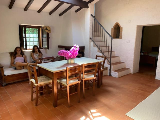 Independent typical country house in olive orchard